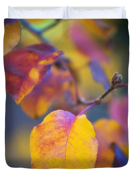 Duvet Cover featuring the photograph Fall Color by Stephen Anderson