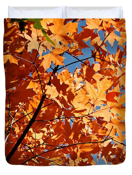 Fall Colors 2 Duvet Cover
