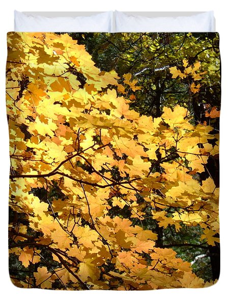 Fall Colors 6407 Duvet Cover