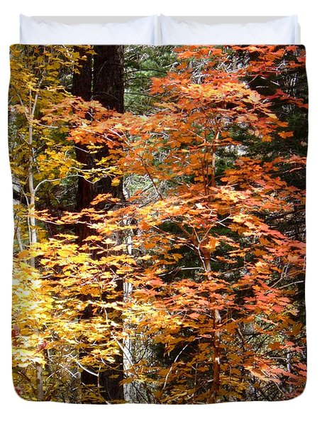 Fall Colors 6412 Duvet Cover