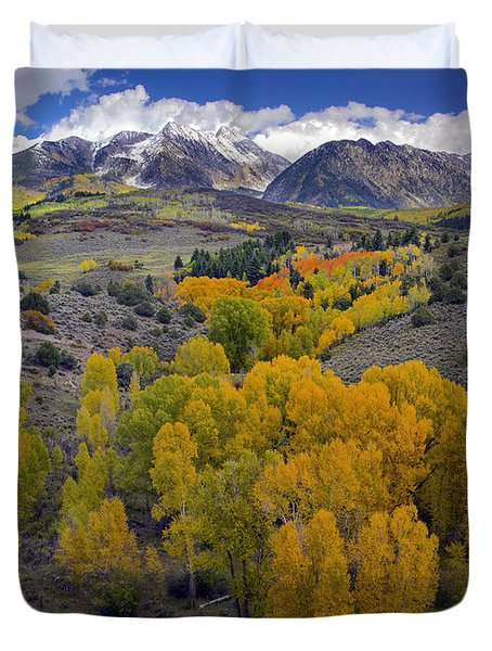 Fall Colors At Chair Mountain Colorado Duvet Cover by Tim Fitzharris