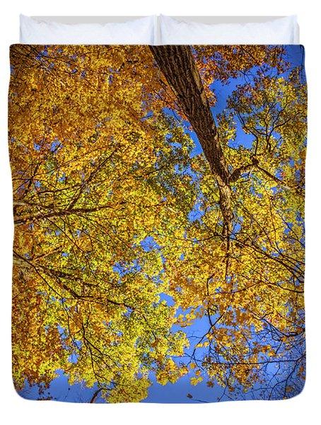 Fall Colors In The Sky  Duvet Cover by LeeAnn McLaneGoetz McLaneGoetzStudioLLCcom