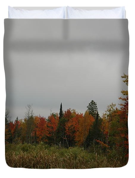 Fall Colors With Cattails Duvet Cover