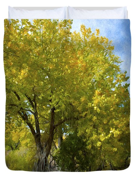 Fall Cottonwoods Duvet Cover by Dianne Phelps