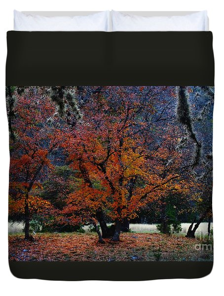 Fall Foliage At Lost Maples State Park  Duvet Cover