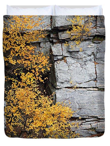 Fall Foliage Colors 01 Duvet Cover