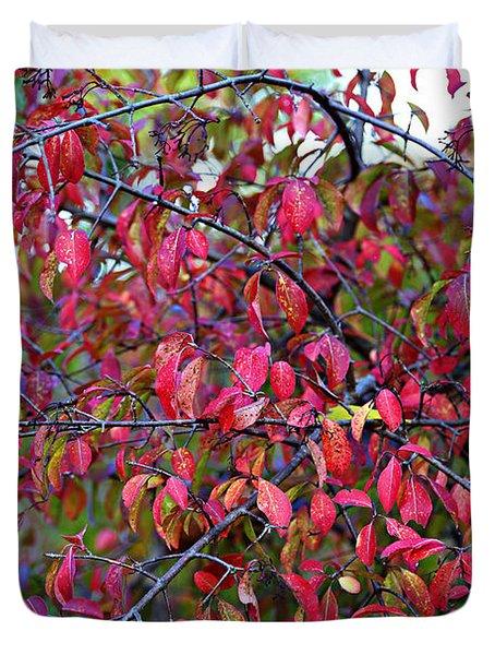 Fall Foliage Colors 05 Duvet Cover