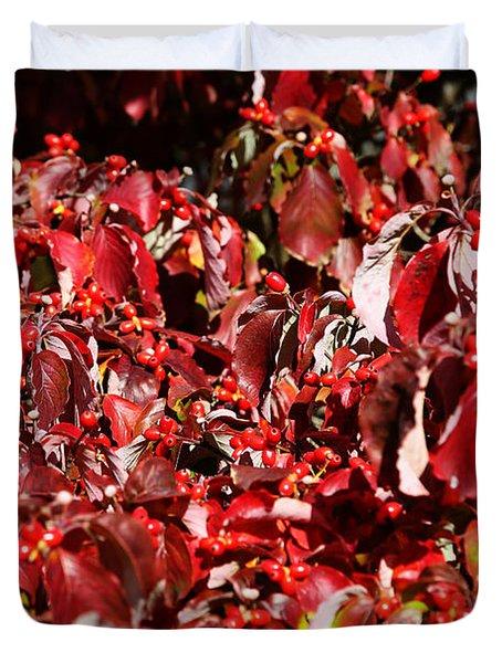 Fall Foliage Colors 08 Duvet Cover