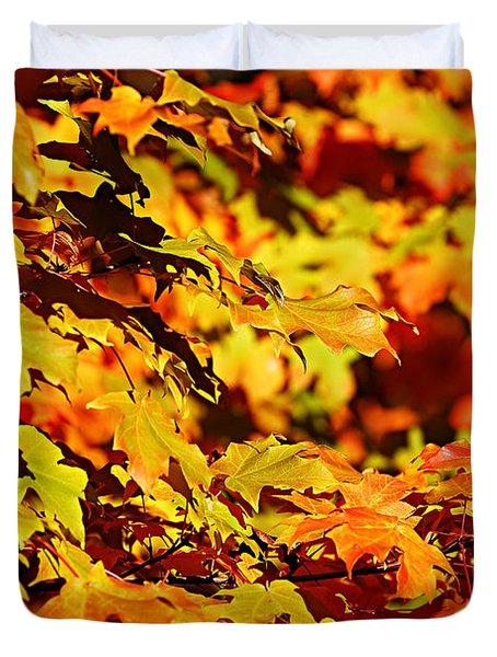 Fall Foliage Colors 13 Duvet Cover