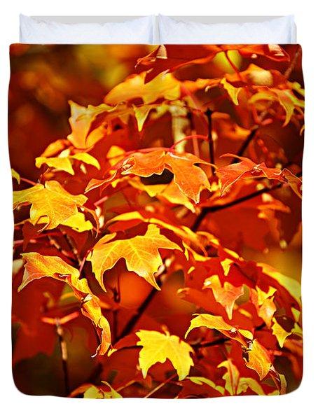 Fall Foliage Colors 14 Duvet Cover