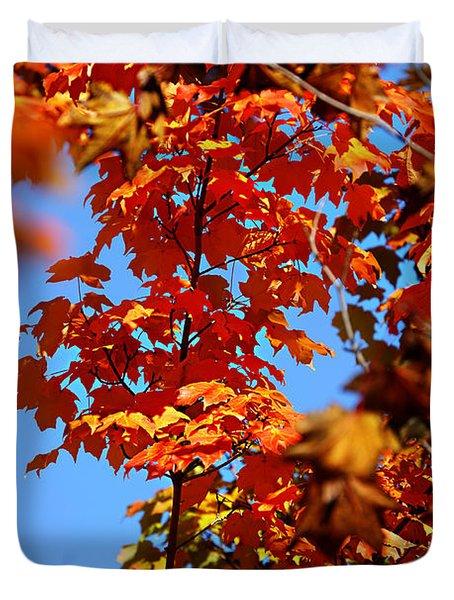 Fall Foliage Colors 15 Duvet Cover