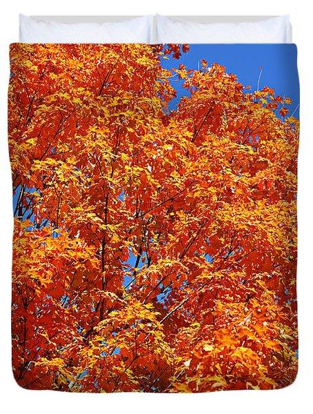 Fall Foliage Colors 18 Duvet Cover
