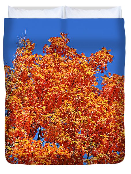 Fall Foliage Colors 19 Duvet Cover