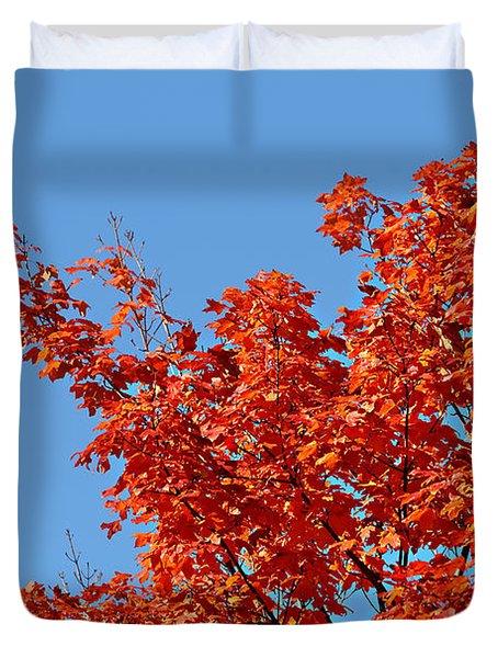 Fall Foliage Colors 20 Duvet Cover
