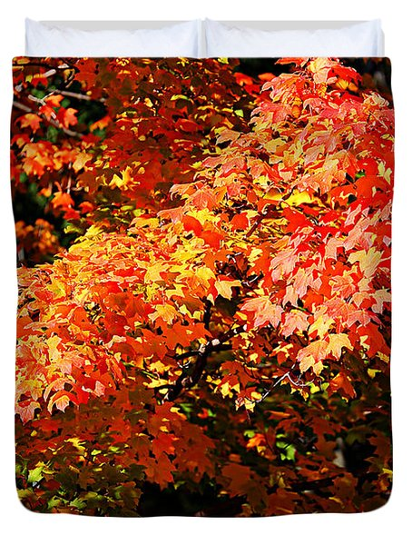 Fall Foliage Colors 21 Duvet Cover