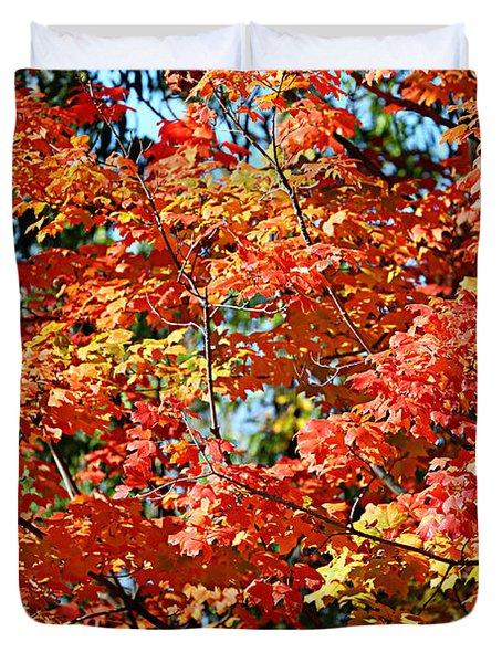 Fall Foliage Colors 22 Duvet Cover
