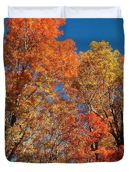 Fall Foliage Duvet Cover by Patrick Shupert