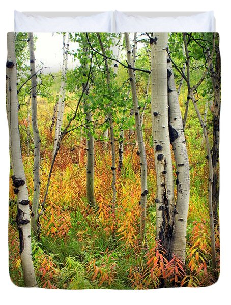 Fall In The Tetons Duvet Cover by Marty Koch