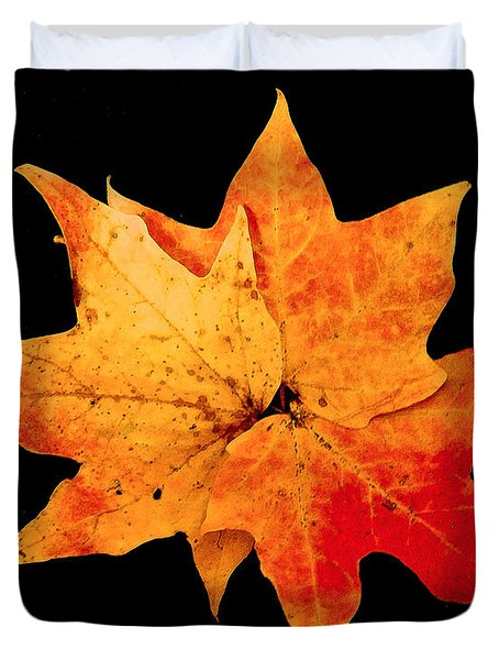 Duvet Cover featuring the photograph Fall Leaf Trio by Dee Dee  Whittle