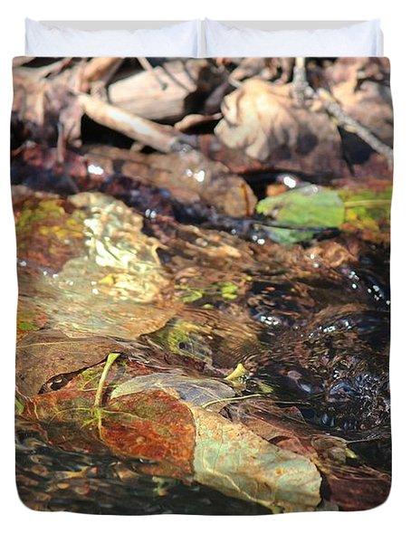 Duvet Cover featuring the photograph Fall Leaves by Ann E Robson