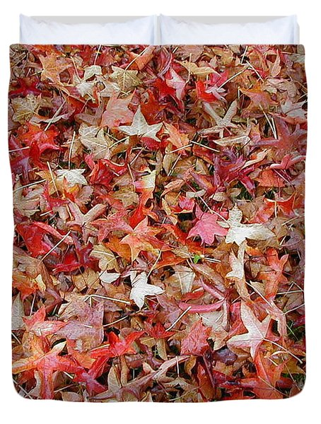 Fall Leaves Duvet Cover by Bev Conover
