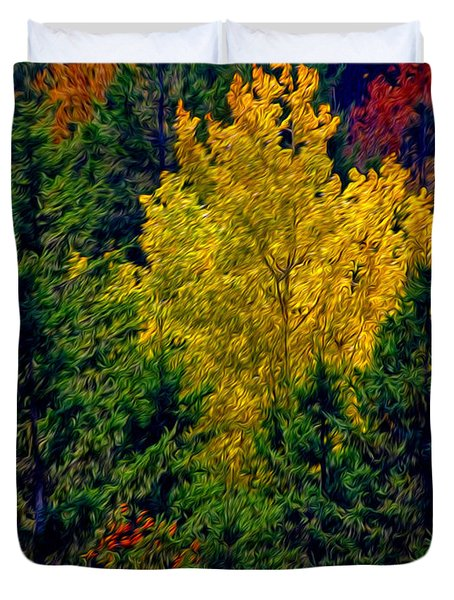 Duvet Cover featuring the photograph Fall Leaves by Bill Howard