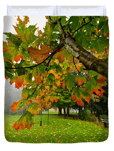 Fall Maple Tree In Foggy Park Duvet Cover by Elena Elisseeva