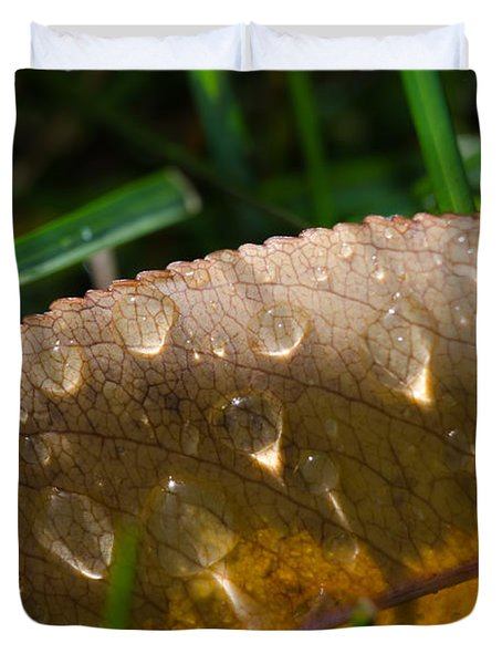 Fall Morning Leaf And Dew Duvet Cover