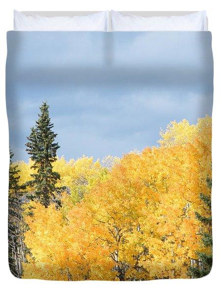 Duvet Cover featuring the photograph Fall Near Ya Ha Tinda by Ann E Robson