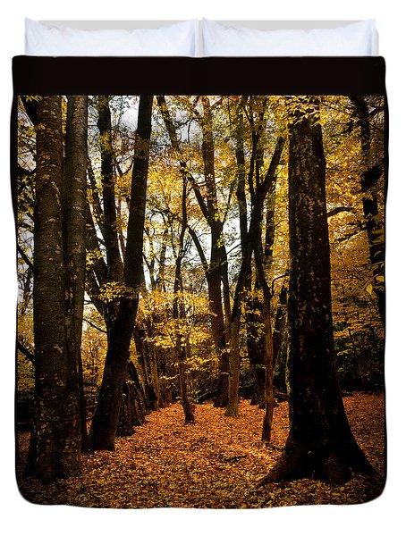 Fall Scene In Bidwell Park Duvet Cover