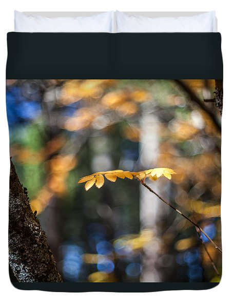 Duvet Cover featuring the photograph Fall Suspended by Aaron Aldrich