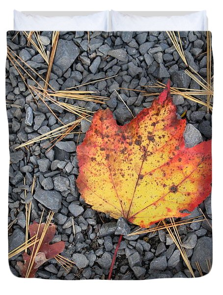 Duvet Cover featuring the photograph Fallen Leaf by Dora Sofia Caputo Photographic Art and Design