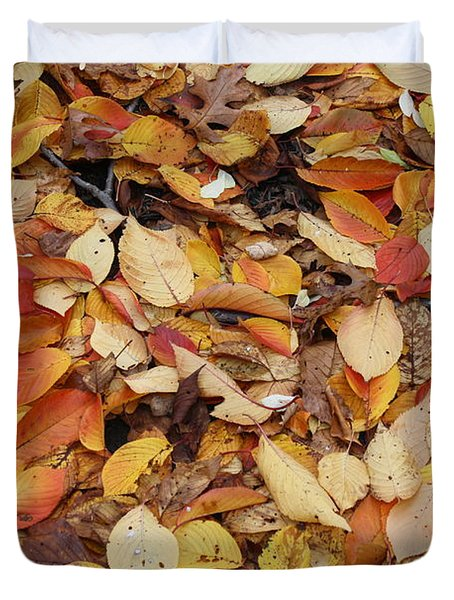 Duvet Cover featuring the photograph Fallen Leaves by Dora Sofia Caputo Photographic Art and Design