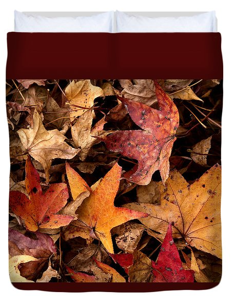 Fallen Leaves Duvet Cover by Rebecca Davis