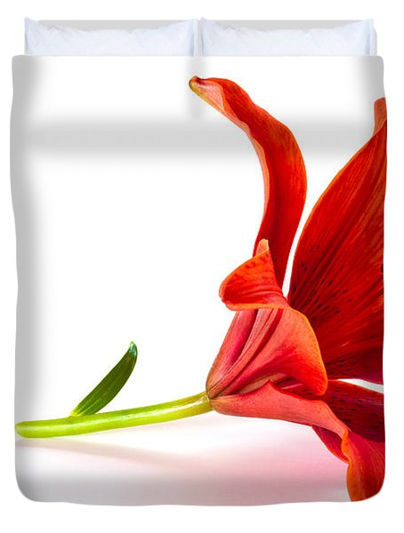 Fallen Tiger Lily Duvet Cover