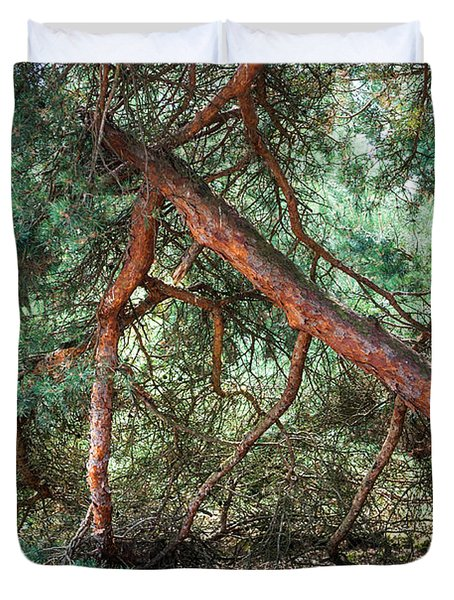 Falling Pine Tree In Veluwe National Park. Netherlands. Duvet Cover by Jenny Rainbow