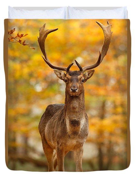 Fallow Deer In Autumn Forest Duvet Cover