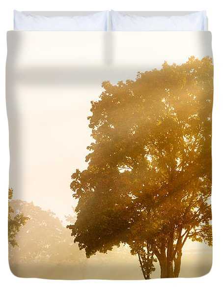 Falls Delight Duvet Cover by James Heckt
