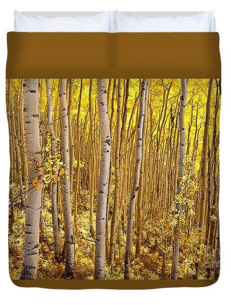 Duvet Cover featuring the photograph Fall's Golden Light by Steven Reed