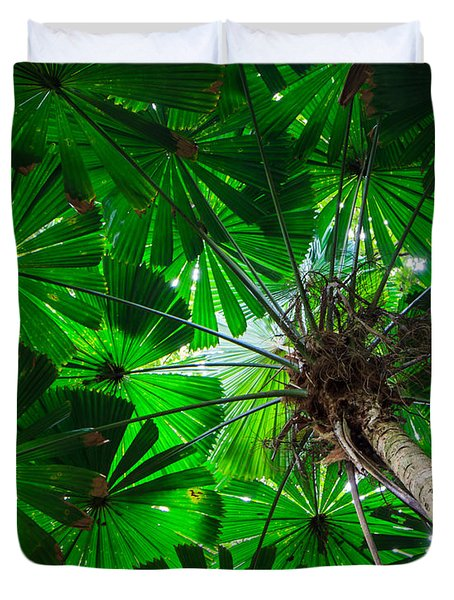Fan Palm Tree Of The Rainforest Duvet Cover