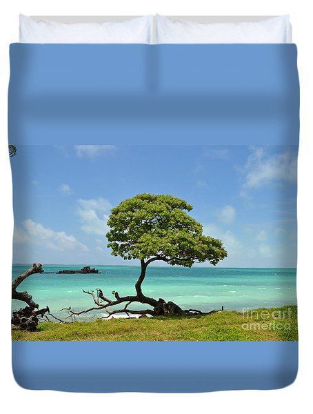 Fanning Tree On Beach Duvet Cover by Eva Kaufman