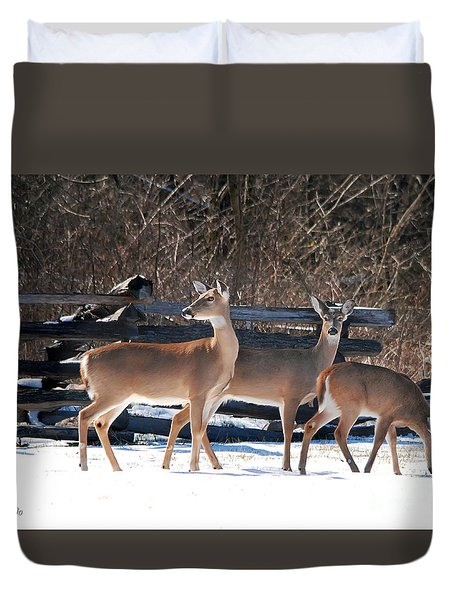 Duvet Cover featuring the photograph Fawn Loving Snow by Nava Thompson