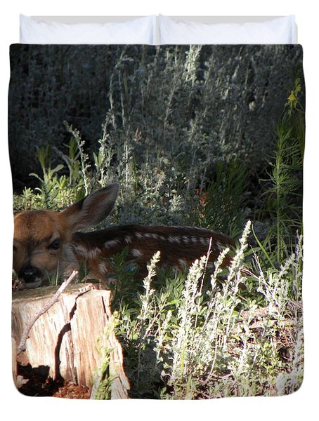 Fawn Front Yard Divide Co Duvet Cover