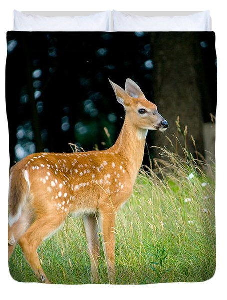 Fawn Duvet Cover by Shane Holsclaw