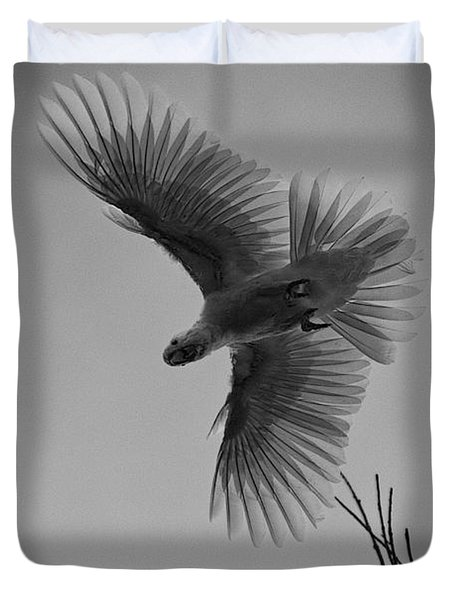 Feathered Flight  Duvet Cover by Douglas Barnard
