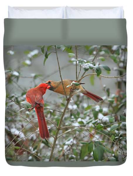 Feeding Cardinals Duvet Cover by Geraldine DeBoer