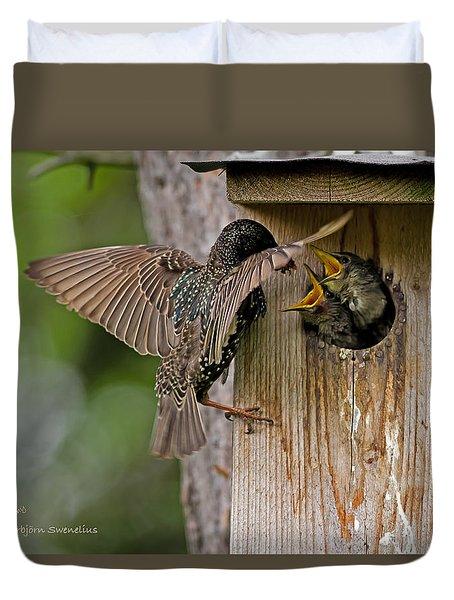 Feeding Starlings Duvet Cover