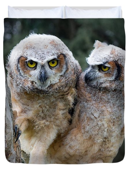 Feeling A Little Grumpy Are We? Duvet Cover by Barbara McMahon