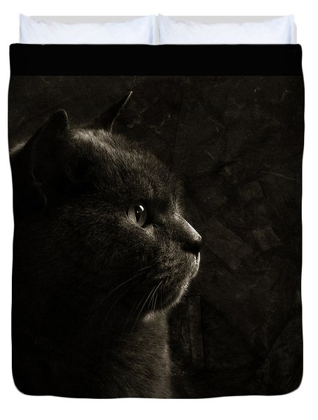 Duvet Cover featuring the photograph Feline Perfection by Laura Melis