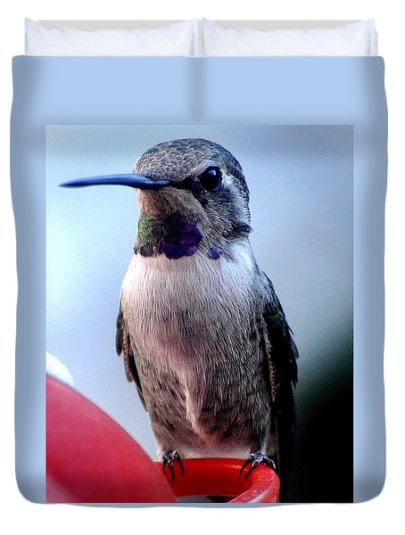 Duvet Cover featuring the photograph Female Anna With Purple Blue Throat by Jay Milo